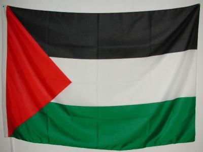 Presidio di solidarietà con il popolo palestinese @ Piazzale FFS a Bellinzona